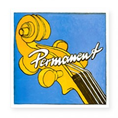 Permanent Double Bass Set (Orchestra & Solo)