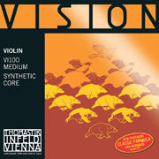 Vision Violin Set ( 4/4 Size With Silver D String )