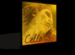 Evah Pirazzi Gold Cello Set