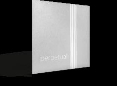Perpetual Violin Set ( Synthetic Aluminum A)